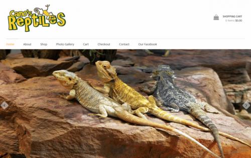 Camos Reptiles